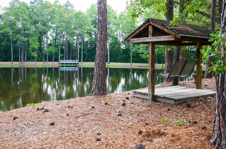 beautiful pond covered swing surrounded by pine trees - The Pines at Willingway - youth program for addiction treatment in Georgia - drug and alcohol rehab for teenagers in Georgia
